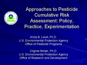 Approaches to Pesticide Cumulative Risk Assessment Policy Practice