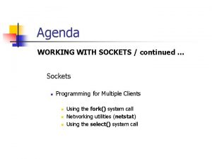 Agenda WORKING WITH SOCKETS continued Sockets n Programming