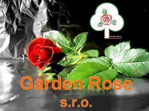 Garden Rose s r o Garden Rose s