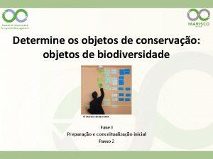 Determine os objetos de conservao objetos de biodiversidade