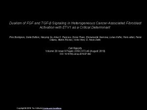 Dualism of FGF and TGF Signaling in Heterogeneous