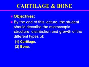 CARTILAGE BONE Objectives n By the end of