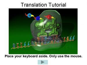 Translation Tutorial Place your keyboard aside Only use