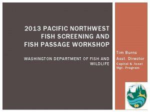 2013 PACIFIC NORTHWEST FISH SCREENING AND FISH PASSAGE