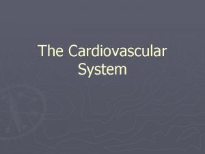 The Cardiovascular System Overview The cardiovascular system includes