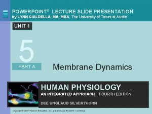 POWERPOINT LECTURE SLIDE PRESENTATION by LYNN CIALDELLA MBA