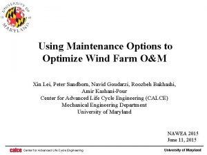 Using Maintenance Options to Optimize Wind Farm OM