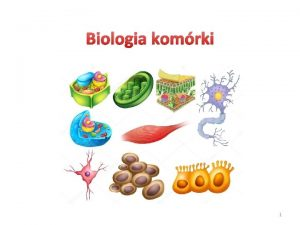 Biologia komrki 1 wiczenie nr 5 Chemiczne skadniki