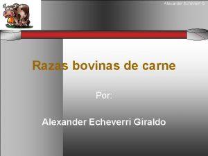 Alexander Echeverri G Razas bovinas de carne Alexander