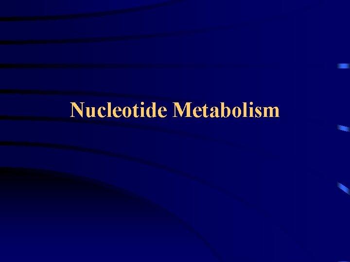 Nucleotide Metabolism BasesNucleosidesNucleotides Base Base Adenine Base Sugar
