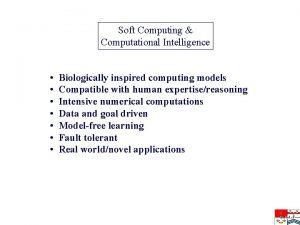 Soft Computing Computational Intelligence Biologically inspired computing models