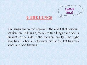 9 THE LUNGS The lungs are paired organs