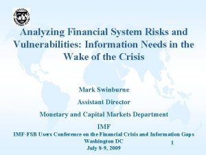 Analyzing Financial System Risks and Vulnerabilities Information Needs