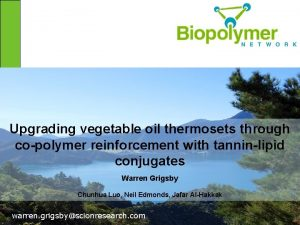 Upgrading vegetable oil thermosets through copolymer reinforcement with