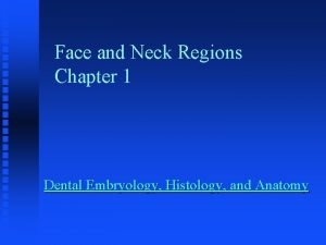 Face and Neck Regions Chapter 1 Dental Embryology