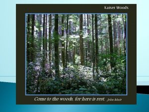 Kaiser Woods Come to the woods for here