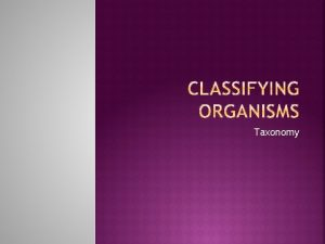 Taxonomy science of classifying organisms groups related organisms