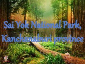 Sai Yok National Park Kanchanaburi province Topography Sai