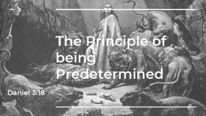 The Principle of being Predetermined Daniel 3 18