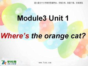 Module 3 Unit 1 Wheres the orange cat