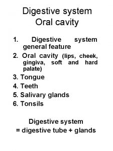 Digestive system Oral cavity 1 Digestive system general