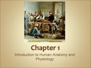 Introduction to Human Anatomy and Physiology Anatomy the
