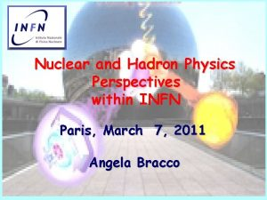 Nuclear and Hadron Physics Perspectives within INFN Paris