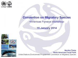 Convention on Migratory Species Americas Flyways Workshop 15