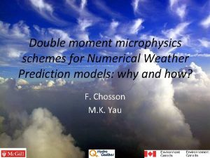 Double moment microphysics schemes for Numerical Weather Prediction