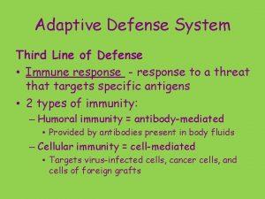 Adaptive Defense System Third Line of Defense Immune