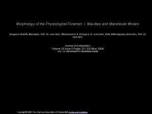 Morphology of the Physiological Foramen I Maxillary and