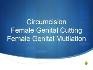 Circumcision Female Genital Cutting Female Genital Mutilation S