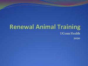 Renewal Animal Training UConn Health 2020 Renewal Animal