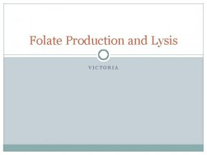 Folate Production and Lysis VICTORIA System Design Lysis