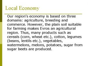 Local Economy Our regions economy is based on