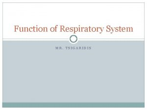 Function of Respiratory System MR TSIGARIDIS Organization and