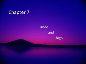 Chapter 7 Knee and Thigh Knee Anatomy Largest