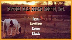 PASTURE PALS EQUINE RESCUE INC Rescue Rehabilitate Rehome