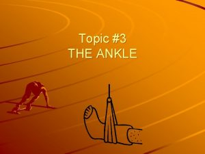 Topic 3 THE ANKLE The ankle is a