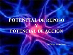 POTENCIAL DE REPOSO Y POTENCIAL DE ACCION Profesores