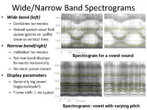 WideNarrow Band Spectrograms Wide band left Combines harmonics