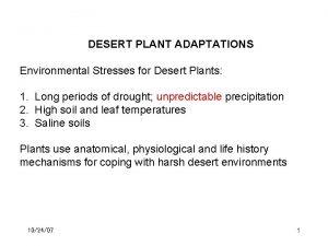 DESERT PLANT ADAPTATIONS Environmental Stresses for Desert Plants