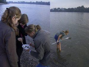 Projekt Multiculti im Rhein Ein Projekt mit Schlerinnen
