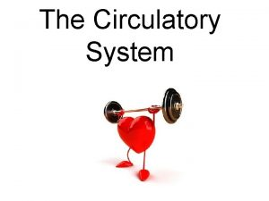 The Circulatory System WHAT IS THE CIRCULATORY SYSTEM