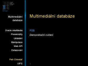 Multimediln databze Oracle inter Media Prerekvizity Multimediln databze