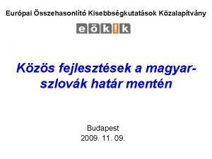 Eurpai sszehasonlt Kisebbsgkutatsok Kzalaptvny Kzs fejlesztsek a magyarszlovk