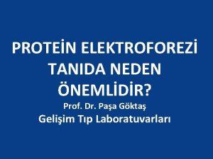 PROTEN ELEKTROFOREZ TANIDA NEDEN NEMLDR Prof Dr Paa