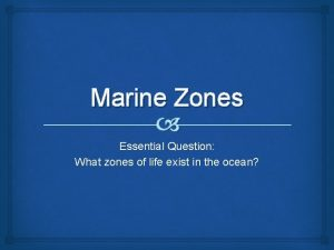 Marine Zones Essential Question What zones of life