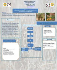 UNIVERSITE KASDI MERBAH OURGLA Facult des sciences Appliqu