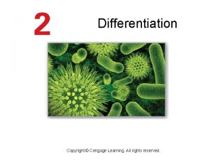 Differentiation Copyright Cengage Learning All rights reserved Basic